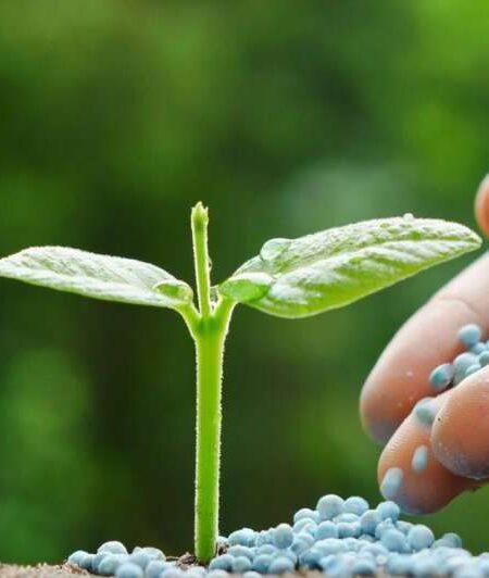 Fertilizantes Tumb