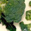Brócoli Di Cicco  Semillera Guasch