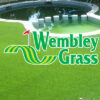 Césped Wembley Grass Mix Semillera Guasch