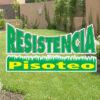 Césped Resistencia Pisoteo Mix Semillera Guasch