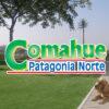 Césped Comahue Mix Semillera Guasch
