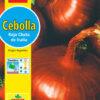 Cebolla de Bulbo Roja Chata De Italia Semillera Guasch