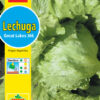 Lechuga Great Lakes 366