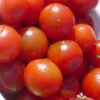 Tomate Cherry Red Cherry Large